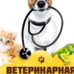 Piața de medicamente de uz veterinar în Republica Moldova este reglementată prin noua lege