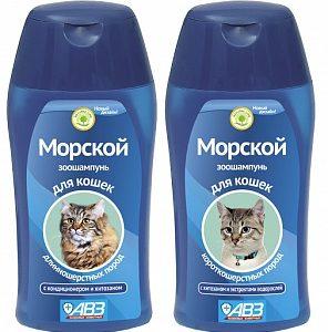 Morskoi_cat