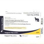 Ofertă de vară – Vanguard Plus 5 / CVL